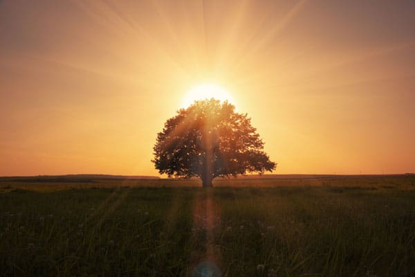 Resilienzfaktoren Optimismus